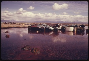 WHY DO WE HAVE THE EPA? This five-acre acid water, oil and sludge-filled pond was used as a dump site by commercial firms before being cleaned up under EPA supervision. It offered no protection to unwary animals. Sheep carcasses are seen in the foreground and at the left along with junked cars and other debris. Photo by Bruce McAllister, 1974, NARA Photographer, Public Domain via Wikimedia Commons.
