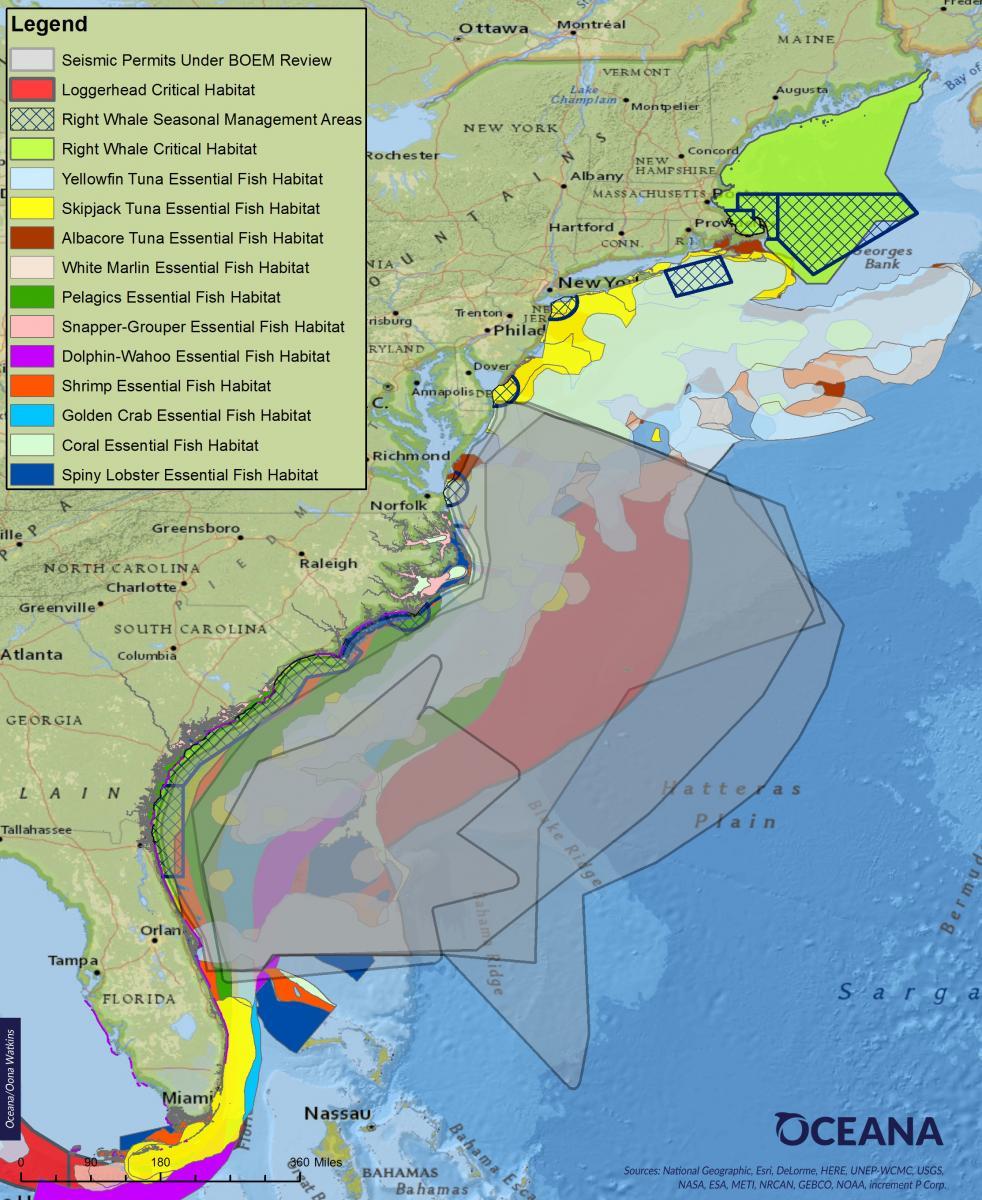 Overlap of Proposed Seismic Airgun Blastin Areas and Essential Fish Habitat and Critical Habitat in the Atlantic (Image: Oceana)